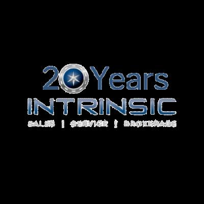 20 years intrinsic logo